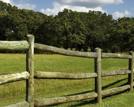 post_and_rail_fencing